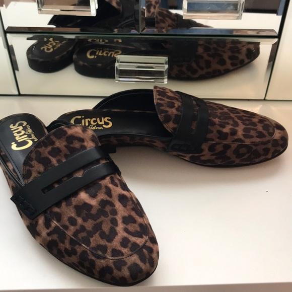 d610f12f9c40 Sam Edelman Shoes | Circus Cheetah Leopard Print Mules | Poshmark